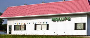 Molly's Foods Unique